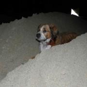 sand anfahrt09
