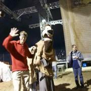 Ankunft Kamel06