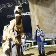 Ankunft Kamel07